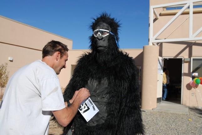 Gorilla Runner